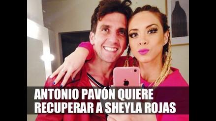Antonio Pavón quiere recuperar a Sheyla Rojas