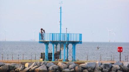 """""""Monstruo marino"""" sorprendió a una pareja en la playa y se vuelve viral"""