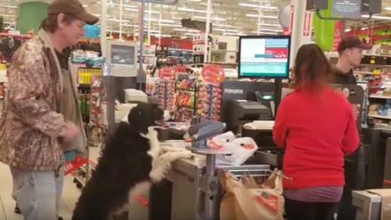 YouTube: Este perrito es capaz de comprar sus propias golosinas