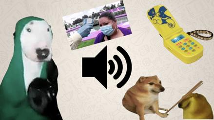 WhatsApp: Cómo crear tus propios stickers con sonido [TUTORIAL]