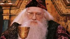 2. Richard Harris, el actor elegido para ser Dumbledore. Temía comprometerse con una franquicia, pero su nieta (fanática de los libros) lo convenció. En 2002 murió y fue reemplazado por Michael Gambon.