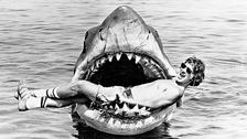 TIBURÓN. La película de los setentas dirogoda por Steven Spielberg está a una altura que será difícil de igualar. Traerla de vuelta solo nos dejaría un mal sabor a todos los que la recordamos con nostalgia.