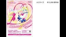 Sailor Moon será imagen de una campaña contra la sífilis en Japón