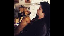 2. Es un amante de los animales. Tiene un perro llamado Mojo. Una vez rescató a una ardilla bebé y lo nombró Peewee.