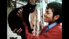 MICHAEL JACKSON tenía muchos animales. Es más, tenía una colección de ellos. Serpientes, llamas, tigres, perros y especialmente gatos. Tenía muchos de ellos