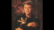 DAVID BOWIE amaba tanto a los gatos, que incluso escribió una canción para las personas como él llamado 'Cat People'.