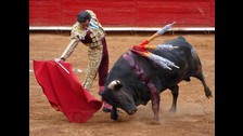 Aficionados a las corridas de toros hay millones en grandes ciudades, poblaciones y pueblos de Francia, España, México, Colombia, Venezuela, Ecuador y Perú. Y se merecen el mismo respeto que cualquiera.