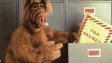 Alf es el nombre que le dan los Tanner. Su verdadero nombre es Gordon Shumway.