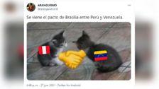 Te mostramos los mejores memes del partido Perú vs. Venezuela.